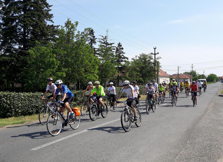 Sute de sportivi au trecut prin Turnu (GALERIE FOTO)