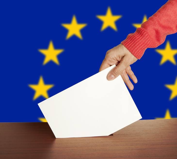 Aproape un sfert din alegătorii pecicani a votat deja