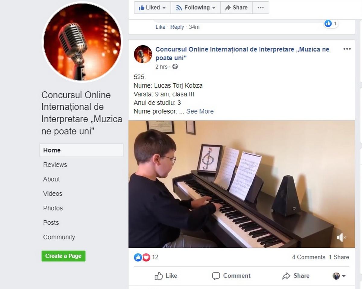 Peste 530 de concurenți din cinci țări, la primul concurs muzical online din Pecica