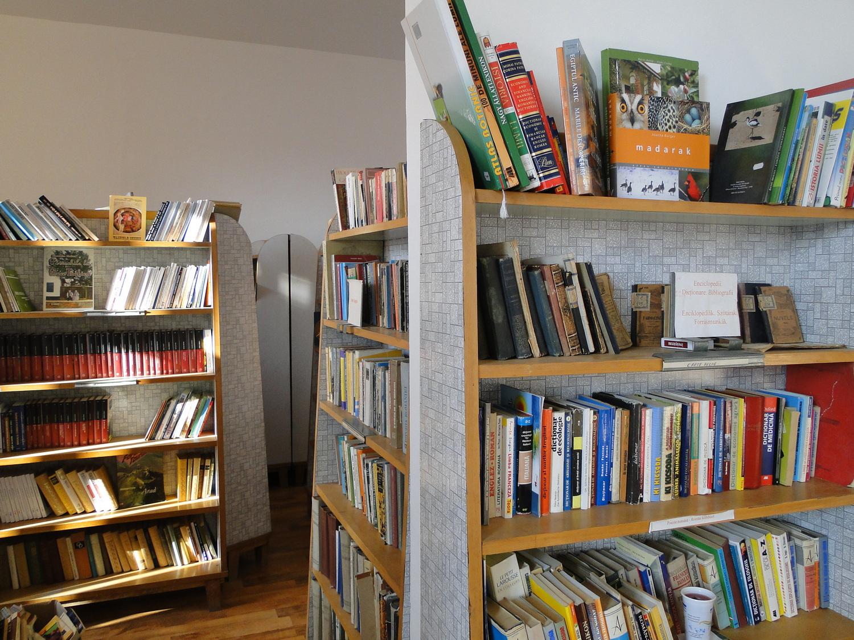 S-a redeschis biblioteca orășenească