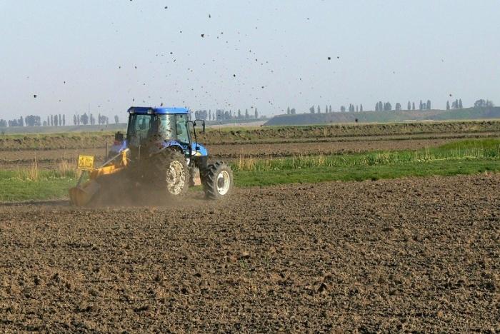 Noua colectivizare: Cooperative agricole de tip nou (I)