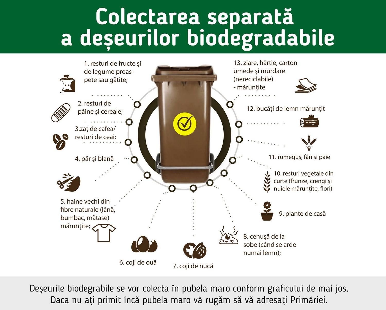 Schimbări în programul de colectare a deșeurilor biodegradabile (tomberonul maro)