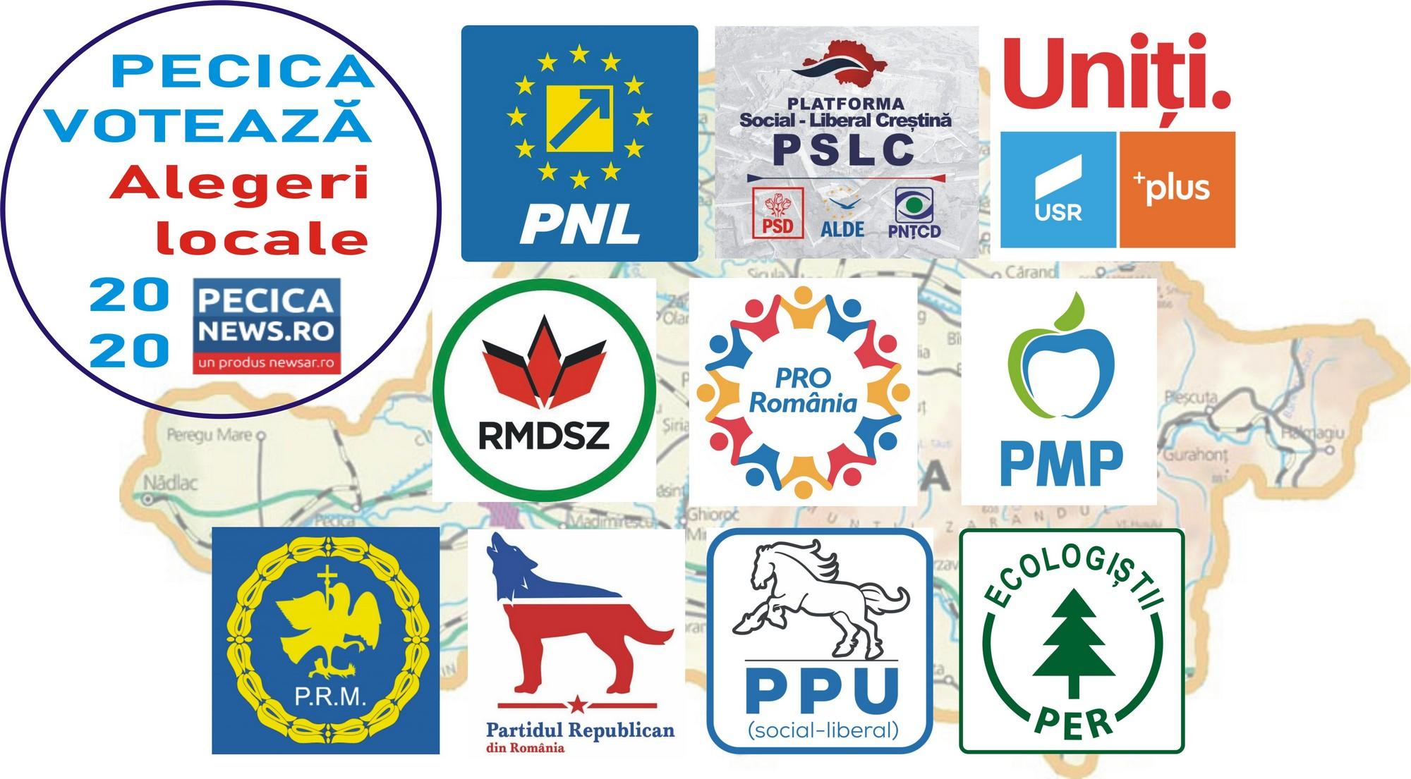 PECICA VOTEAZĂ: Propunerile partidelor pentru Consiliul Local și Consiliul Județean